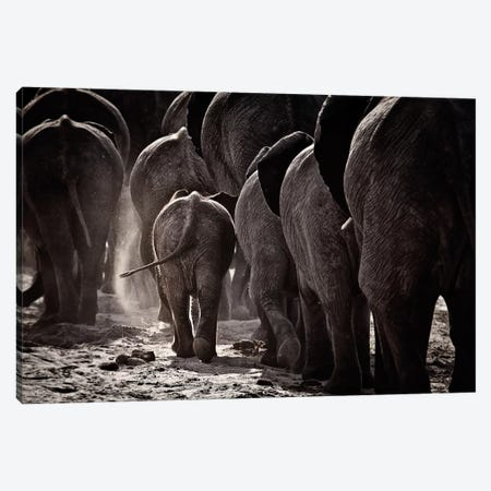Walking Home Canvas Print #OXM1224} by Ben McRae Canvas Art Print