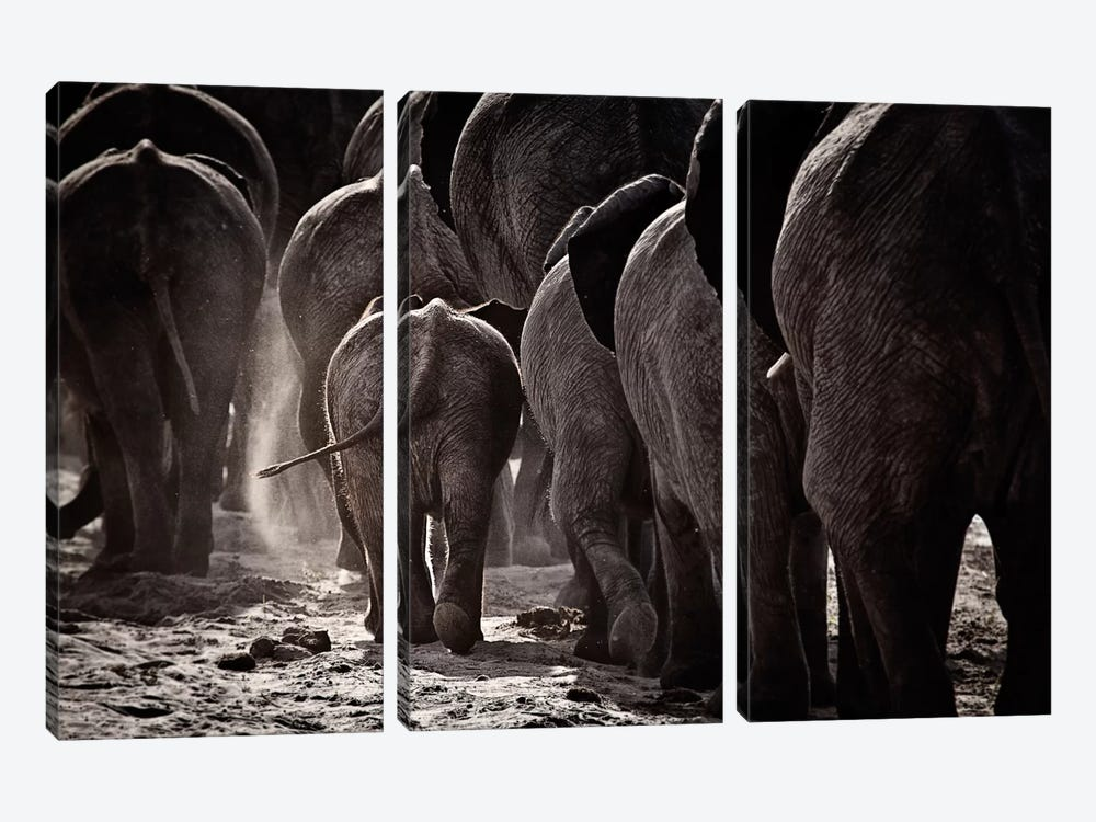 Walking Home by Ben McRae 3-piece Canvas Artwork
