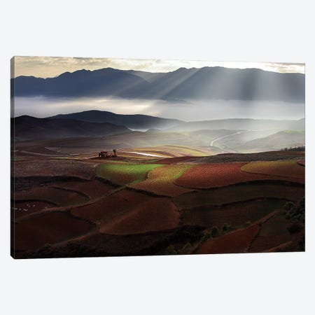Early Spring On Red Land Canvas Print #OXM1231} by BJ Yang Canvas Art Print
