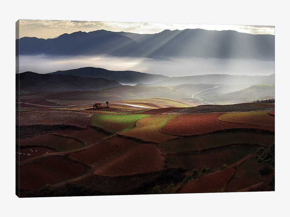 Early Spring On Red Land by BJ Yang 1-piece Canvas Art