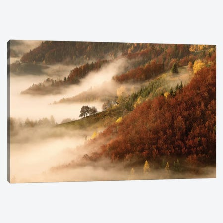 November's Fog Canvas Print #OXM1236} by Bor Canvas Artwork