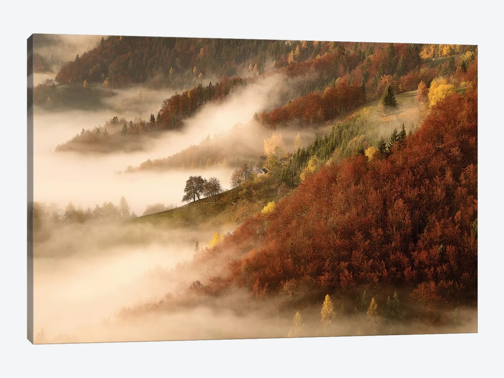 November's Fog by Bor 1-piece Art Print