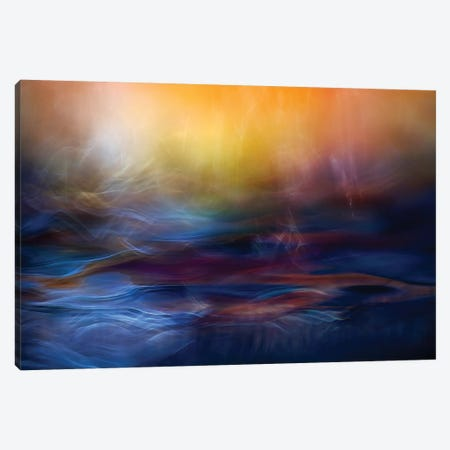 Inner Peace Canvas Print #OXM123} by Willy Marthinussen Art Print