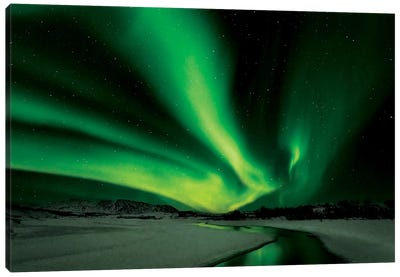 Aurora Borealis Canvas Art Print
