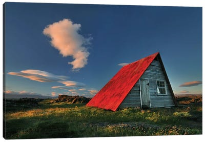 The Red Roof Canvas Art Print