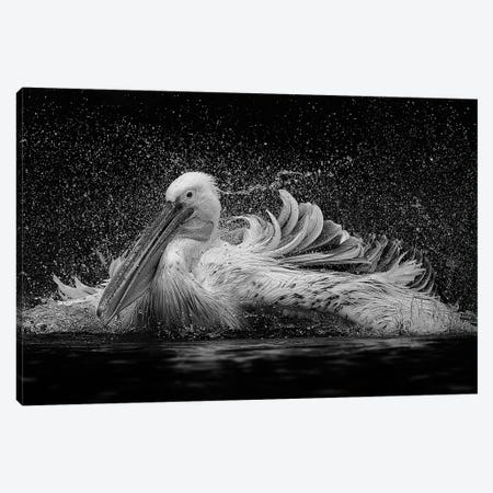 Bath 3-Piece Canvas #OXM1253} by C.S.Tjandra Canvas Print