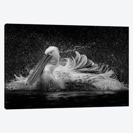 Bath Canvas Print #OXM1253} by C.S. Tjandra Canvas Print