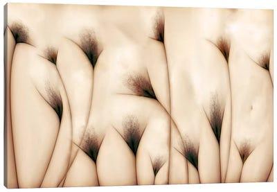 Vaginae Terram Canvas Print #OXM1259