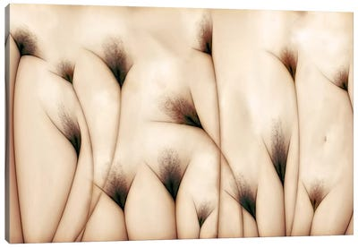 Vaginae Terram Canvas Art Print