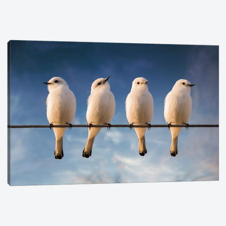White Monjita Canvas Print #OXM1264} by Chechi Peinado Art Print