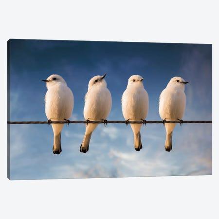 White Monjita Canvas Print #OXM1264} by Chechi Peinado Art Print