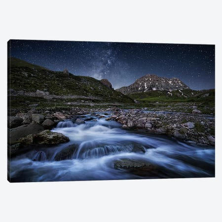 Elements Of Nature Canvas Print #OXM1268} by ChrisKaddas Canvas Wall Art