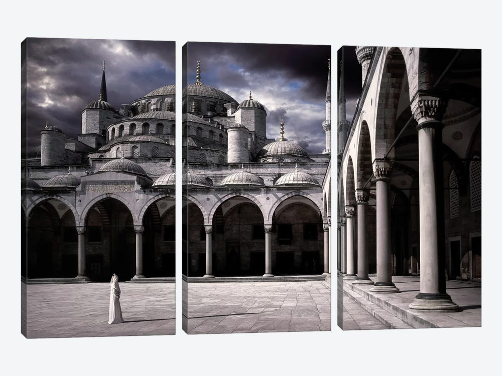 Lady And The Mosque by Daniel Murphy 3-piece Art Print