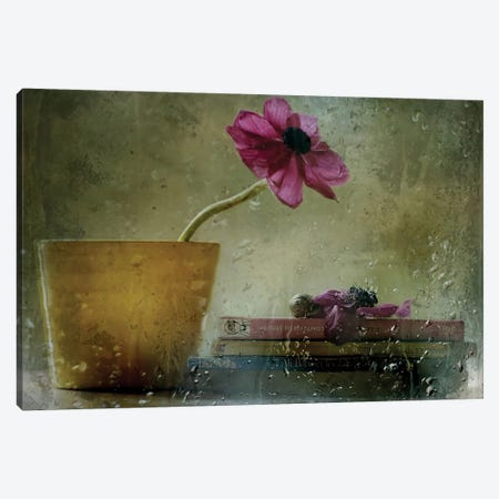 A Day To Stay At Home Canvas Print #OXM1310} by Delphine Devos Canvas Artwork