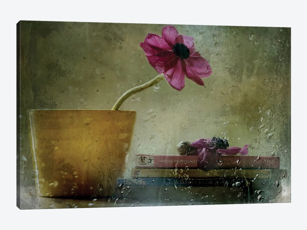 A Day To Stay At Home by Delphine Devos 1-piece Canvas Artwork
