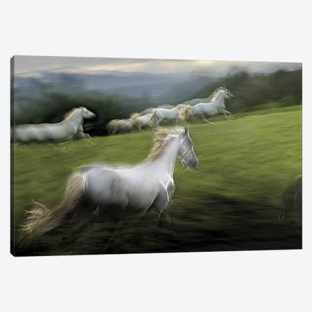 Over The Hill Canvas Print #OXM131} by Milan Malovrh Canvas Art
