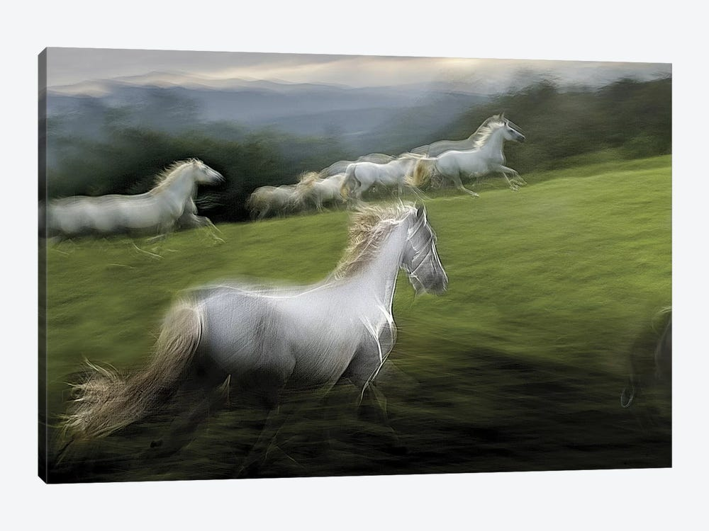 Over The Hill Art Print By Milan Malovrh Icanvas