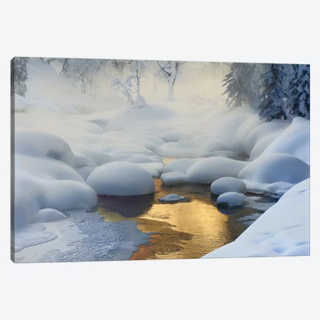 Siberia, -37°C (-35°F) Canvas Print #OXM1321} by Dmitry Dubikovskiy Art Print