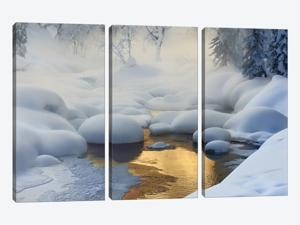 Siberia, -37°C (-35°F) by Dmitry Dubikovskiy 3-piece Canvas Wall Art