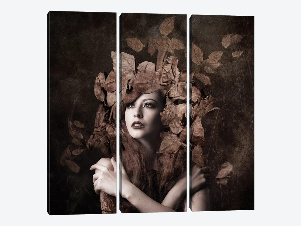 Artemis, Daughter Of Zeus by Faizal Besari 3-piece Canvas Art Print