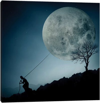 The Dreamer Canvas Art Print