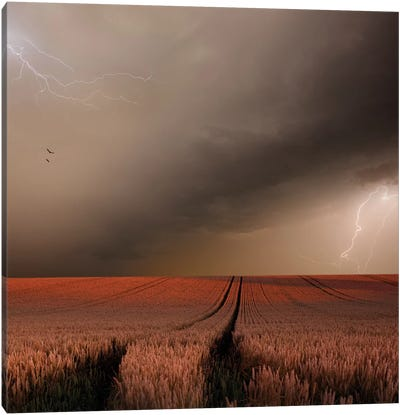 In The Vastness Of Strohgaeu Canvas Art Print