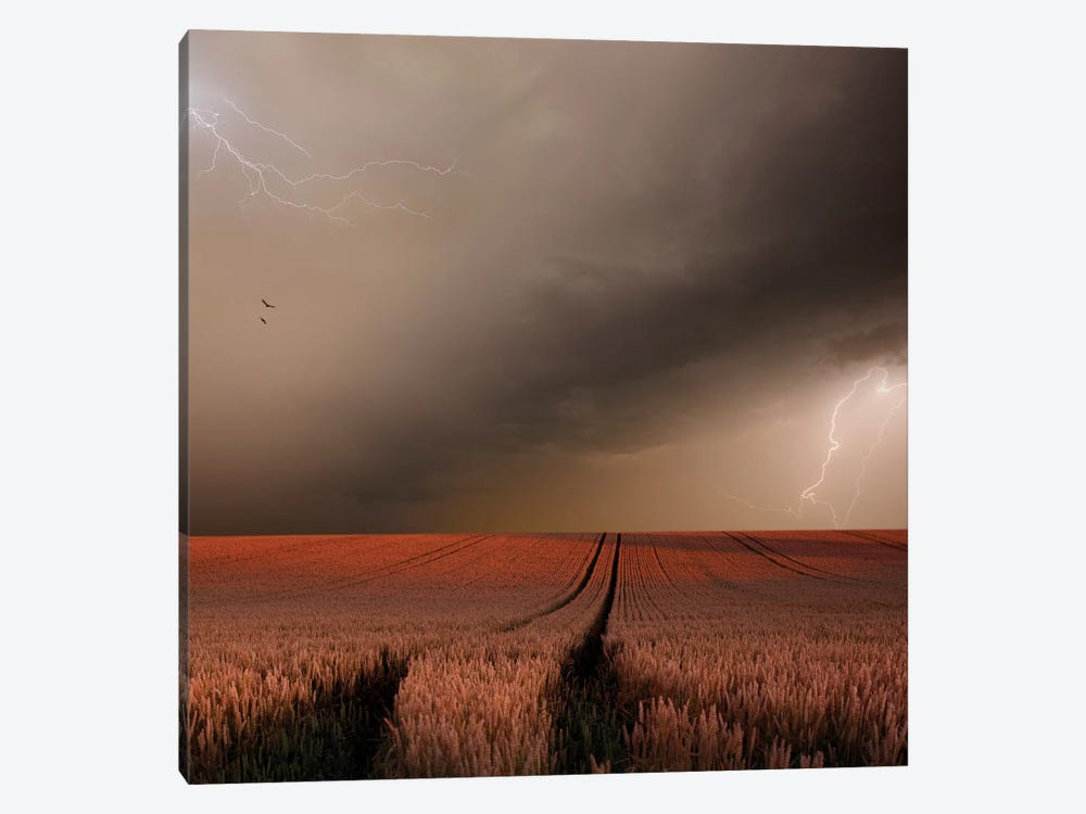 In The Vastness Of Strohgaeu 1-piece Canvas Print