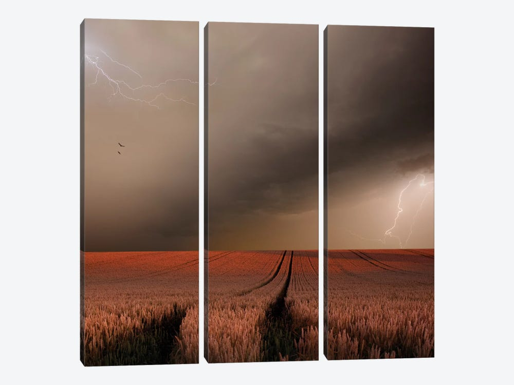 In The Vastness Of Strohgaeu 3-piece Canvas Print
