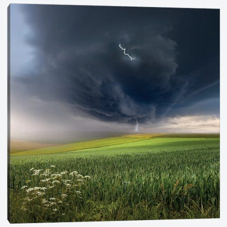 June Storm Canvas Print #OXM1381} by Franz Schumacher Art Print