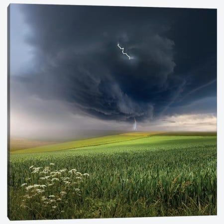 June Storm Canvas Print #OXM1381} by Franz Schumacher Art Print