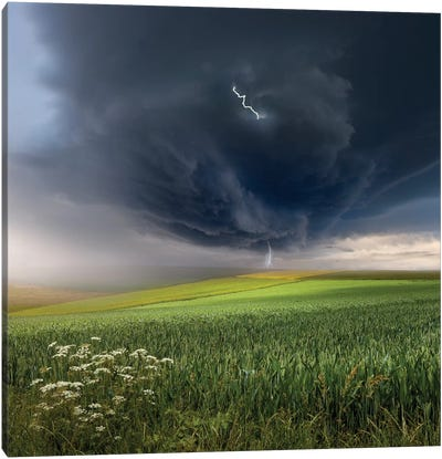 June Storm Canvas Art Print