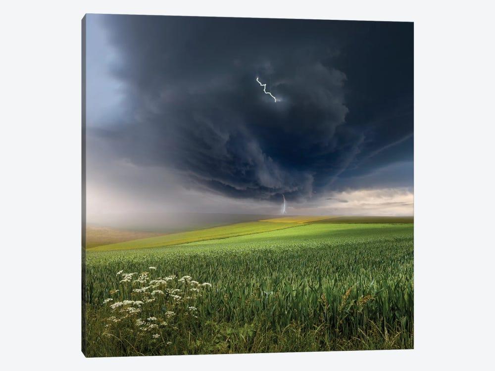 June Storm Canvas Art Print By Franz Schumacher Icanvas