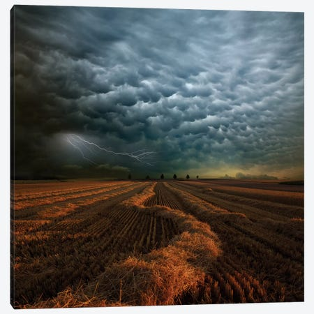 Mammatus Canvas Print #OXM1382} by Franz Schumacher Canvas Art Print