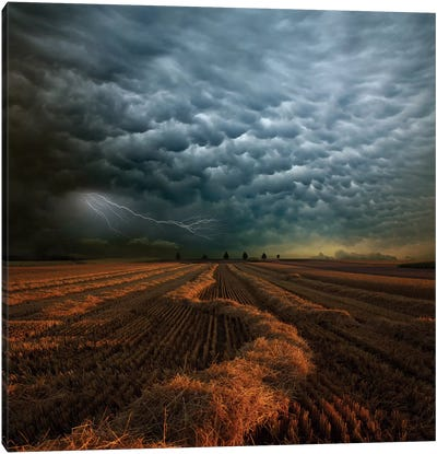 Mammatus Canvas Art Print