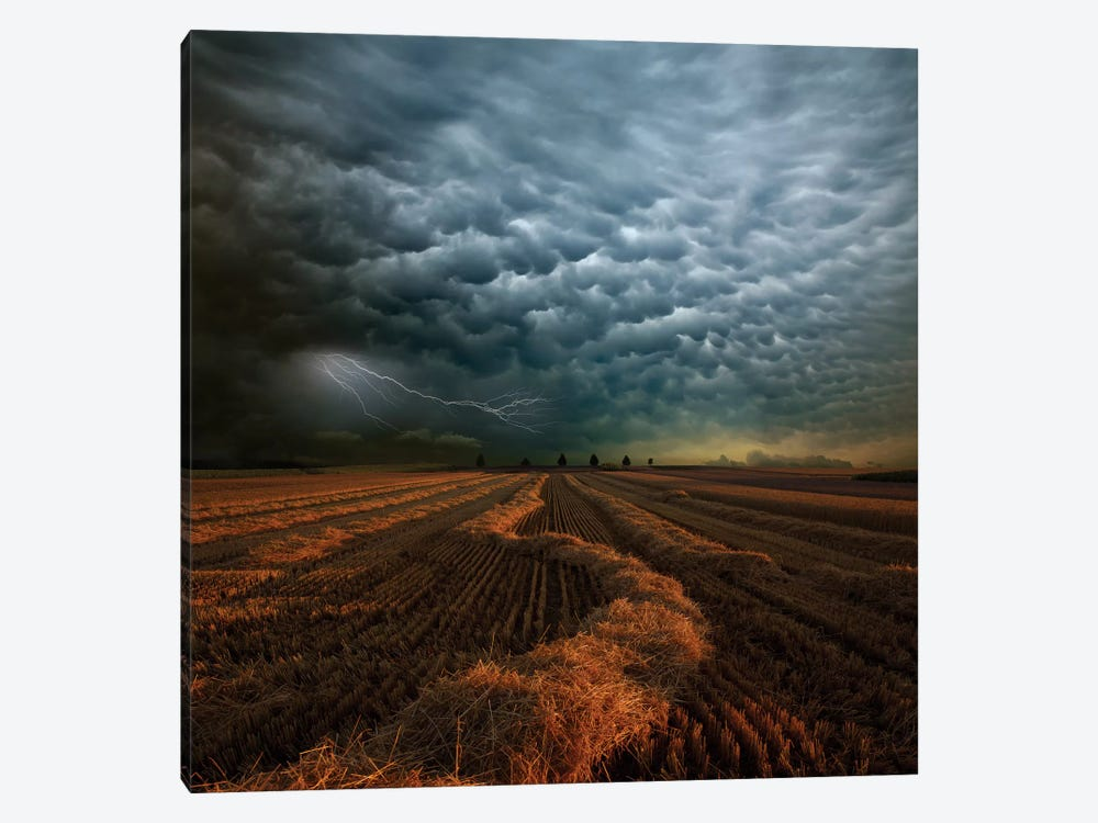Mammatus by Franz Schumacher 1-piece Art Print