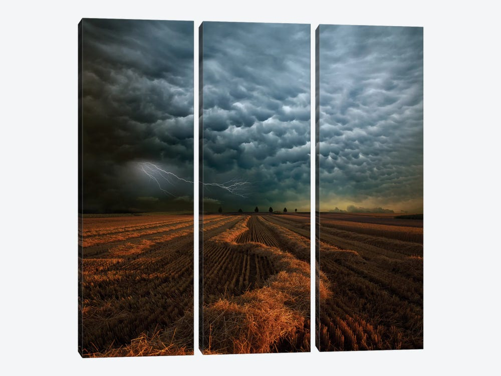 Mammatus by Franz Schumacher 3-piece Canvas Art Print