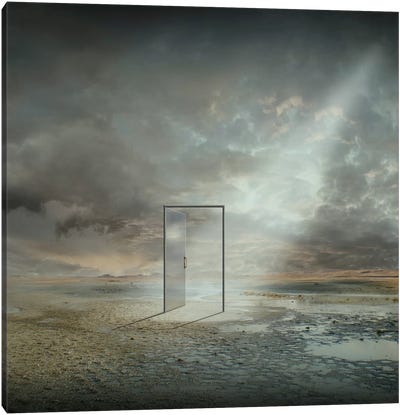 Behind The Reality Canvas Art Print