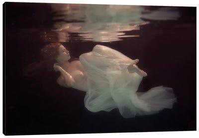 Sleeping Beauty Canvas Art Print