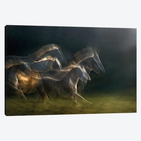 Echoing In Motion Canvas Print #OXM139} by Milan Malovrh Canvas Wall Art