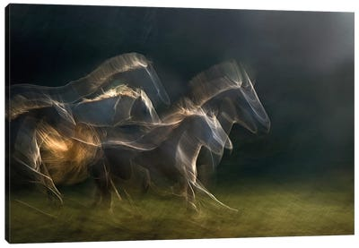 Echoing In Motion Canvas Art Print