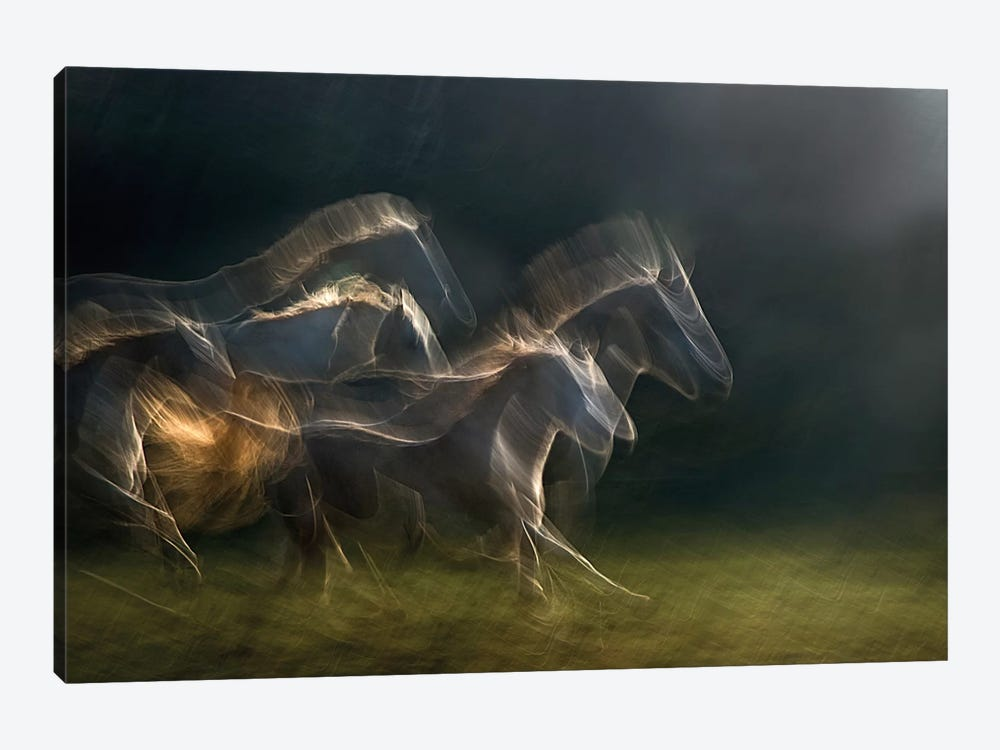 Echoing In Motion by Milan Malovrh 1-piece Canvas Art