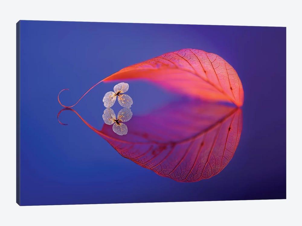 Flower In Heaven by Sophie Pan 1-piece Canvas Art