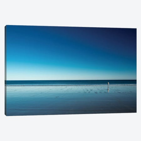 The Blues Canvas Print #OXM1475} by Harmeet Marwaha Canvas Wall Art