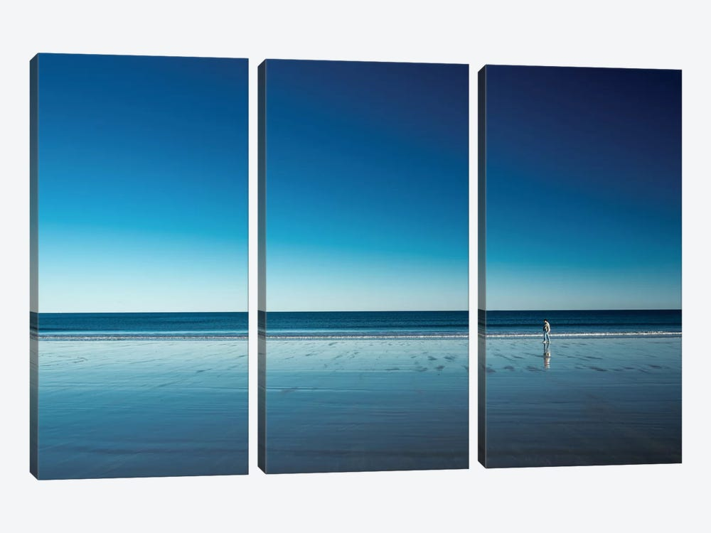 The Blues by Harmeet Marwaha 3-piece Canvas Wall Art