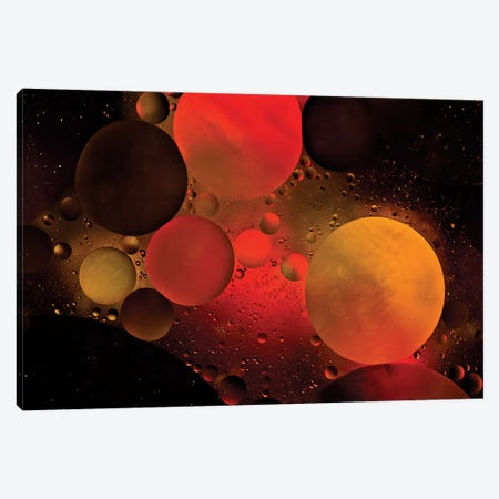 Astronomical Canvas Print #OXM1483} by Heather Bonadio Canvas Artwork