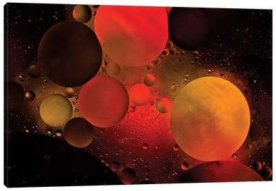 Astronomical Canvas Art Print