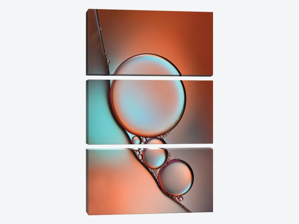 Glimmer by Heidi Westum 3-piece Canvas Artwork