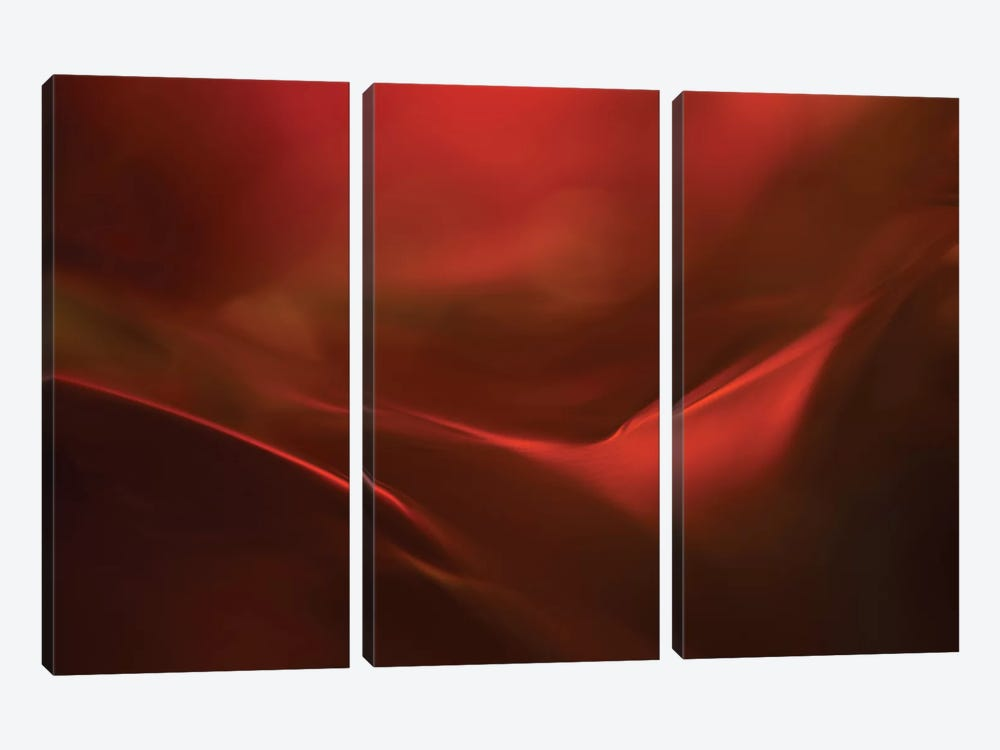 The Red Valley by Heidi Westum 3-piece Canvas Art