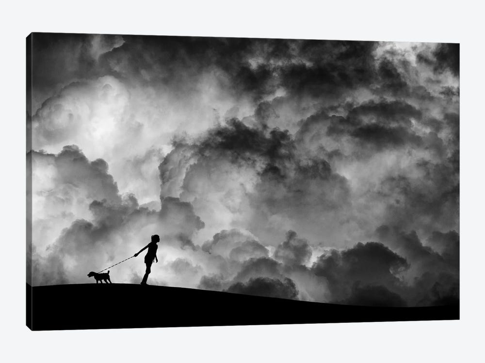 Prelude To The Dream by Hengki Lee 1-piece Canvas Wall Art