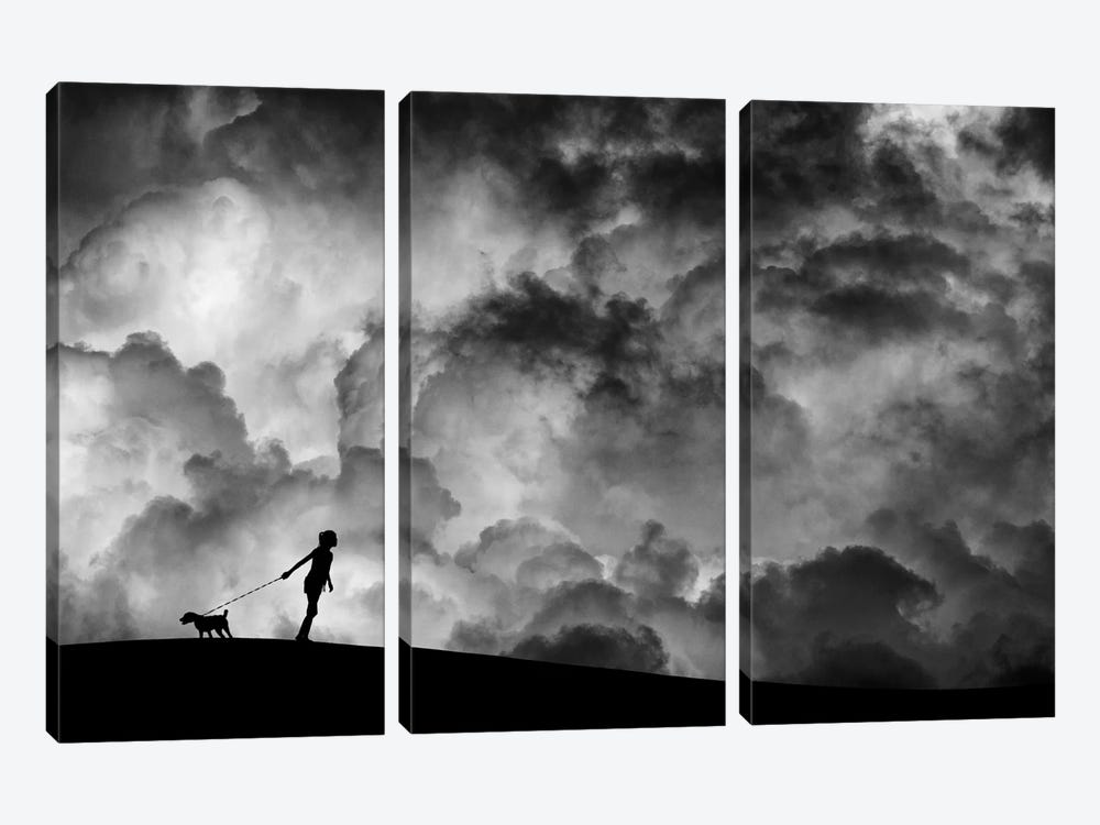 Prelude To The Dream by Hengki Lee 3-piece Canvas Wall Art
